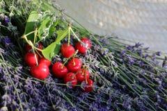 Лаванда и вишни стоковая фотография rf