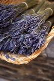 лаванда Стоковые Фото