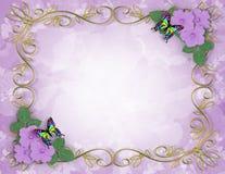 лаванда hibiscus рамки цветков Стоковые Фотографии RF