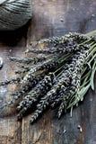 Лаванда - ароматичные цветки Стоковое Изображение