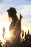 Лаванда и девушка стоковое изображение rf