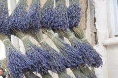 Лаванда; Святой Remy de Провансаль стоковые фотографии rf