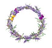 Лаванда цветет венок, бабочки акварель Стоковые Изображения