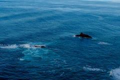 Лава, который замерли на океанском дне и вставлять вне из-под воды Стоковая Фотография