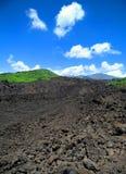 лава mt поля etna стоковое фото rf