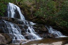 Лавр падает большой национальный парк закоптелых гор стоковое изображение rf