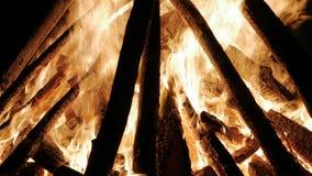 Лагерный костер в ноче Гореть вносит дальше поднимающее вверх в журнал оранжевых пламен близкое сток-видео