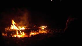 Лагерный костер в ноче сток-видео
