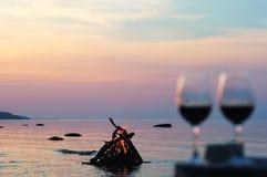 Лагерный костер и бокалы с вином Стоковые Изображения RF
