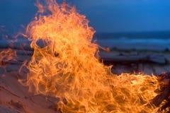 лагерный костер пляжа Стоковая Фотография