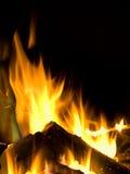 лагерный костер Стоковые Фотографии RF