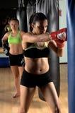 лагерь бокса Стоковая Фотография
