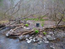 Лагерь 2 весны Стоковая Фотография RF