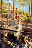 Лагерь в древесинах Стоковые Изображения RF