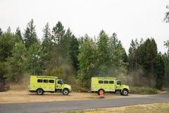 Лагерь огня Terwilliger в национальном лесе Willamette Стоковая Фотография RF