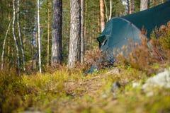 Лагерь шатра в лесе Стоковое Фото