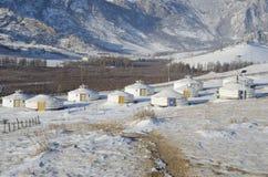 Лагерь Yourt в заповеднике Terelj, Монголии Стоковое Изображение