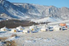 Лагерь Yourt в заповеднике Terelj, Монголии Стоковые Изображения