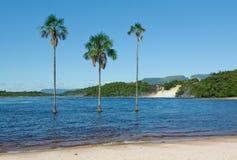 лагуна Венесуэла canaima стоковое изображение rf
