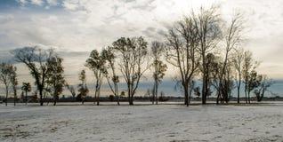 Лагуна Венеции в зиме Стоковые Изображения RF