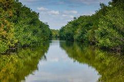 Лагуна залива Biscayne - национальный парк Biscayne - Флорида Стоковая Фотография RF