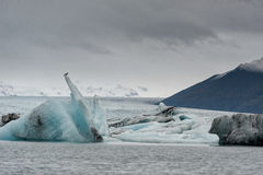 Лагуна и гора ледника Jokulsarlon в предпосылке Птица на верхней части айсберга стоковое фото rf