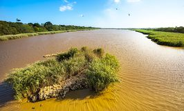 Лагуна Сент-Люсия Южной Африки Стоковая Фотография RF