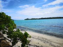 Лагуна тропического рая стоковое фото rf