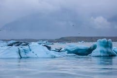 Лагуна льда Стоковые Изображения RF