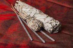 Ладан шалфея Salvia ApianaWhite стоковые фото