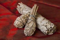 Ладан шалфея Salvia ApianaWhite стоковое фото rf