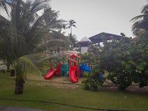 Ладони и деревья в плоском курорте Бразилии стоковое фото rf