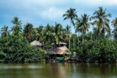 Ладони на береге тропического залива Стоковое Изображение RF