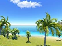 ладони пляжа Стоковое фото RF