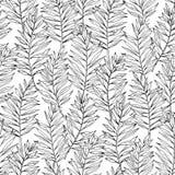 Ладонь ареки вектора безшовная выходит картина Экзотическая листва Ботаническая иллюстрация черная белизна иллюстрация вектора