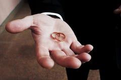 ладонь звенит венчание Стоковое Изображение RF