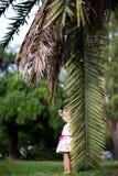 ладонь листьев девушки Стоковое Изображение