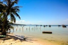 Ладонь на пляже против шлюпок отмелого и глубокого моря на горизонте Стоковое Изображение RF