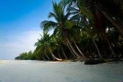 ладонь пляжа пустая выровнянная древняя Стоковая Фотография