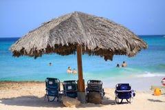 ладонь пляжа aruba Стоковая Фотография