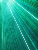 лазер толпы Стоковая Фотография