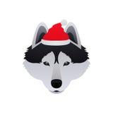 Лайка с Рождеством Христовым собаки сибирская иллюстрация вектора