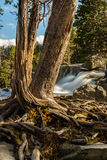 Лаке Таюое в октябре Стоковая Фотография RF