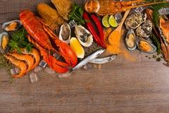 лакомка еды принципиальной схемы питательная Стоковое фото RF