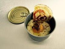 лакомка еды принципиальной схемы питательная стоковая фотография rf