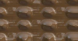 лакомка шоколада глянцеватая Стоковая Фотография RF