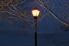 Лампа в ноче Стоковые Изображения RF