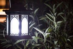 Лампа в саде травы Стоковое Изображение RF