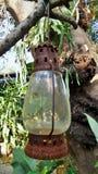Лампа в саде Стоковое Изображение RF