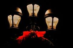 Лампа зимы Стоковые Изображения RF